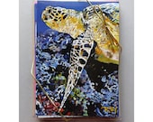 Set of 8 Notecards, Artist Kim Rody's Majestic Series: Note Card Collection, Sea Life