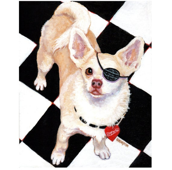 White Chihuahua with Governor Eye Patch 8x10 Glicee Print from Original Pet Portrait - Korpita ebsq