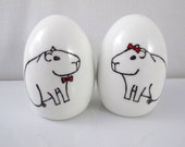 Unique, hand painted Capybara salt and pepper shakers, cruet set