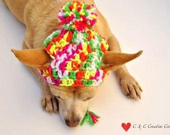 Neon Dog Hat - Pet Hat - Cat Hat - Dog Beanie - Photo Prop - Hand Crochet - Made to Order
