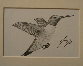 Hummingbird Flying Right Small Original Pencil Drawing - Last day at this SALE price