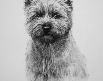 Cairn Terrier dog fine art Limited Edition print from an original charcoal drawing
