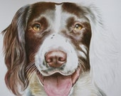Pet portrait of your dog painted in watercolour