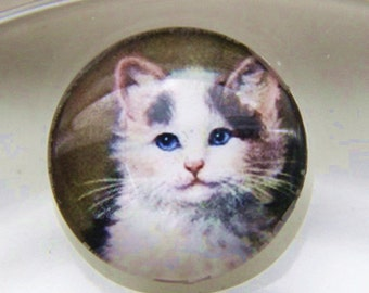 12 pcs of hand made cat glass cabochon 25mm-0999-CAT 3
