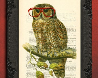 owl decor red glasses owl wall art, owl wall decor owl art print dictionary geeky gifts book page print