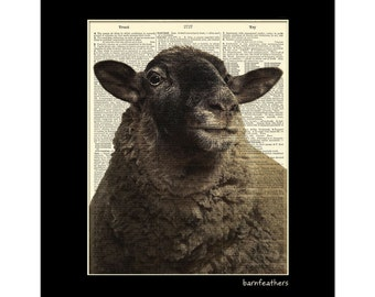 Baa Baa Black Sheep - Vintage Dictionary Art Print - Shabby Chic - Book Page Print No. P198