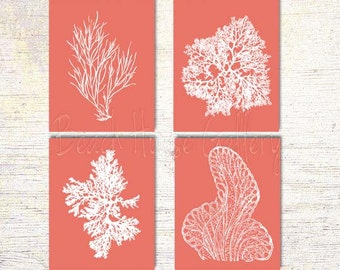 Coral Art, Pink Coral Prints, Pink Sea Coral, Print Set FOUR, Coral Decor Coral Wall Art, Ardent Coral,Coral Print, Pink Coral