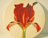 Rusty Red Iris Porcelain Trivet