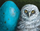 """Great Gray Owlet """"The Egg and I"""" bird portrait fine art giclee print"""