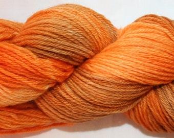 Hand Painted 100% Superwash BFL Wool DK Weight Yarn (146)