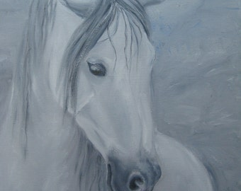 A Grey Horse Portrait in Oil