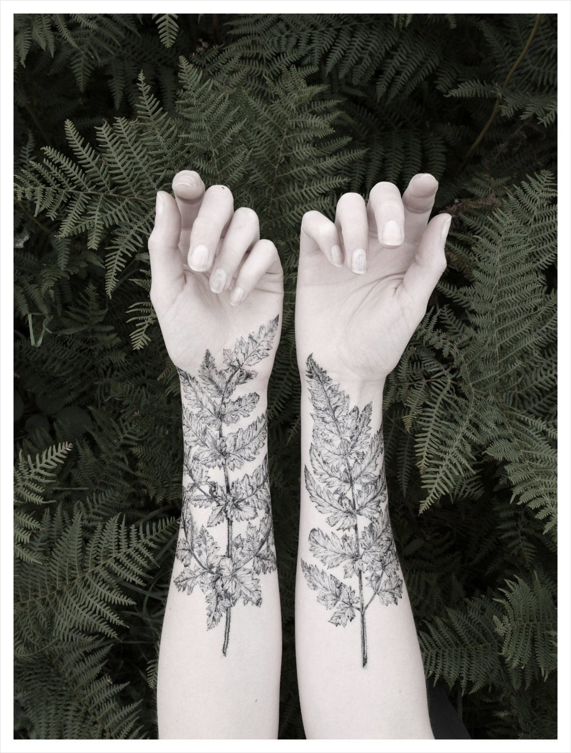 Fern crystal temporary tattoo kit nature girl from the for White temporary tattoos