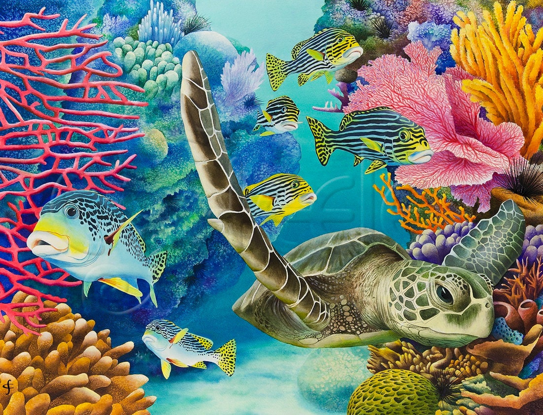 Carolyn steele tropical art print scuba snorkel coral for Turtle fish paint