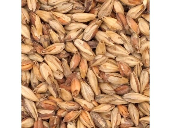 All Natural Raw Victory 28L Brewers Grains For Home Beer Brewing 1 Pound