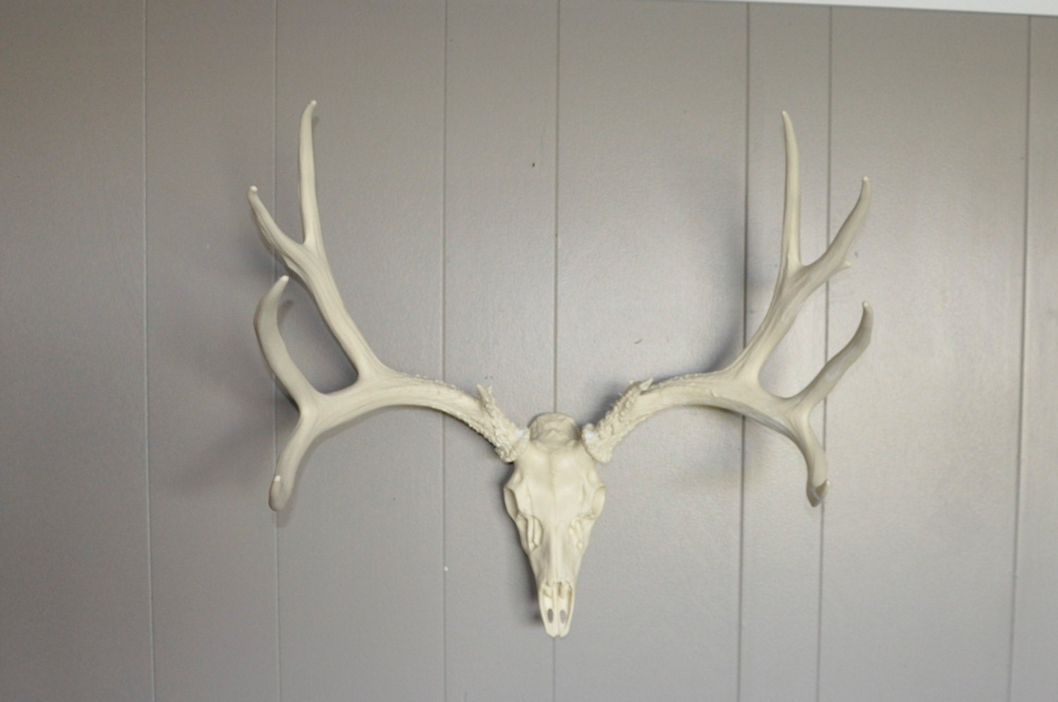 Faux Deer Antler Mounts