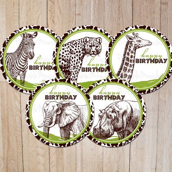 Items similar to safari birthday party decoration zoo for Animal party decoration