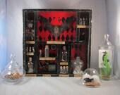 CUSTOM Taxidermy Curiosities and Oddities Shadow Box Curiosity Cabinet Victorian Apothecary Batman