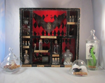 CUSTOM Taxidermy Curiosities and Oddities Shadow Box Curiosity Cabinet Victorian Apothecary Goth Bat Batman Bone