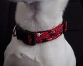 Seeing Stars w/Red Background KOUTURE Adjustable Dog Collar-Ready To Ship