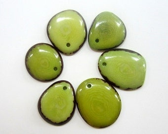 Lime GREEN Tagua thin slice /// NEO N /// Small /// Nut /// Vegetable ...