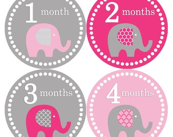 Monthly Baby Stickers Baby Month Stickers Baby Girl Month Stickers Monthly Photo Stickers Monthly Milestone Stickers 246