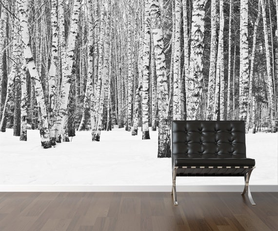 bouleau papier peint arbre repositionnable peler et coller. Black Bedroom Furniture Sets. Home Design Ideas