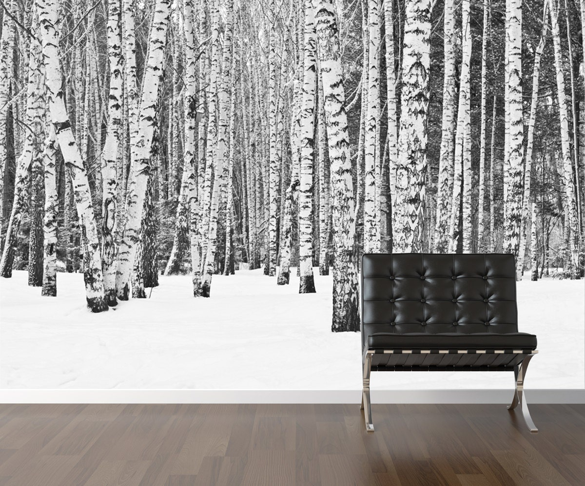 Birch tree wallpaper repositionable peel stick wall paper for Black and white tree wallpaper mural