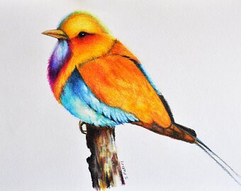 Exotic bird 2 - Original Colored Pencil drawing, Ready To Ship 5.5x8 Inch Bird painting