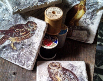 Birds of Prey Marble Tile Coasters - Set of 4