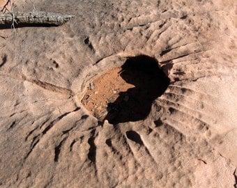 Unusual Rock 1
