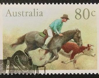 Horse and bull Australia -Handmade Framed Postage Stamp Art 11209