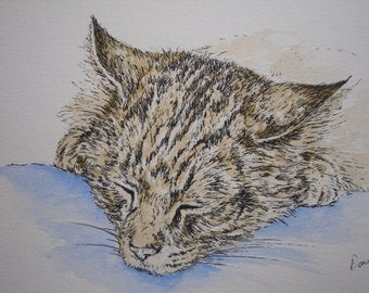 An original watercolour and ink drawing. 'Sleepy Head'