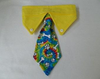Groovy dog necktie