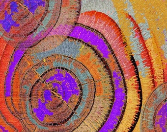 Tree Ring Abstract - Giclee Print