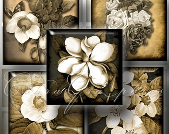 Flowers in Sepia - 1.5x1.5 inch squares - Digital Collage Sheet CG-464S for Jewelry, Crafts