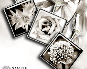 Flowers in Sepia - 1x1 inch squares - Digital Collage Sheet CG-539S - digital downloads for Jewelry, Crafts