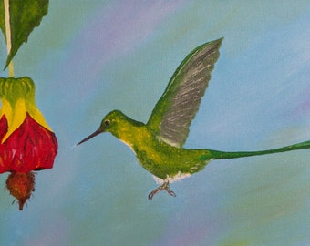 "Hummingbird Painting, Hummingbirds, Birds, Violet, Sylph, Original Oil Painting - ""Violet-tailed Sylph"" (8"" x 16"")"