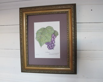 Pen and Ink and Colored Pencil Grape Motif Print