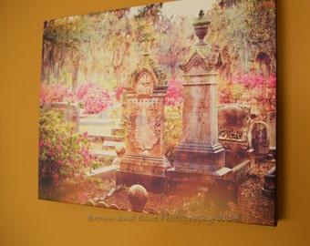 Azaleas in Savannah Bonaventure Cemetery