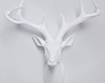 White faux deer head wall mount - White stag head with antlers Australia - Faux Deer Head, Wall Mounted Deer Head