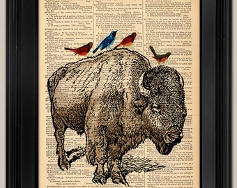 "Buffalo with Birds art print. Upcycled vintage book page art print. Print on book page.  Fits 8""x10"" frame."