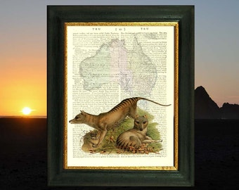 Extinct Tasmanian Tiger (Thylacine). Art print on antique book page. 212 year old paper. Vintage text art.