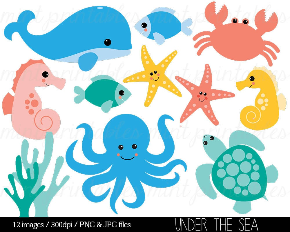 Sea animal clipart illustration