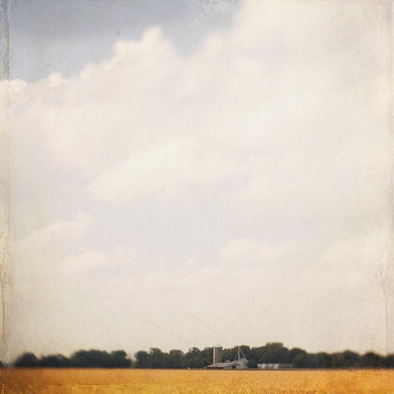 Autumn Kansas Farm Trina Baker Photography