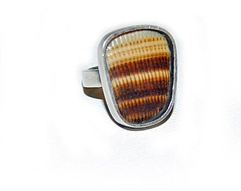 Of the Earth Ring- Shell Ring