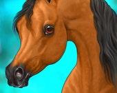 ACEO Arabian Horse Bay Fine Art Print