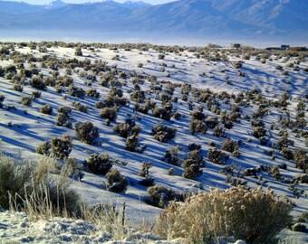 Taos art Blue Winter fields snowy sagebrush shadows  New Mexico photograph 8x12