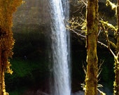 Waterfall Woodland Old Growth Forest Fine Art Photography Enchanted Silver Falls Oregon Greeting Card THUNDERING WATERS by Spinning Castle