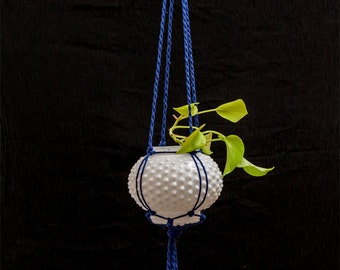 Glass Dot Hanging Planter with cobalt cord