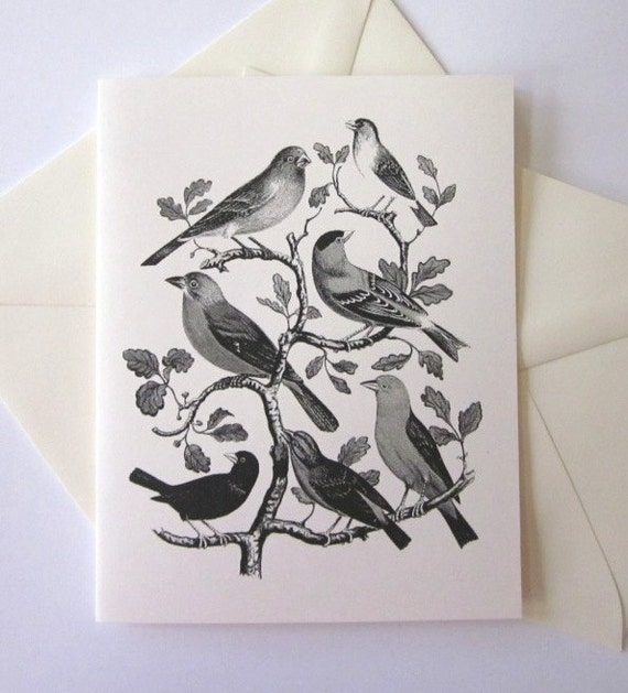 Wild Birds Note Cards Set of 10 with Matching Envelopes